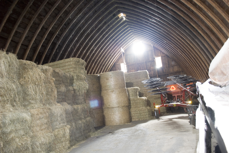 Farm Hay Mow