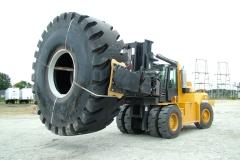 Cat Tire